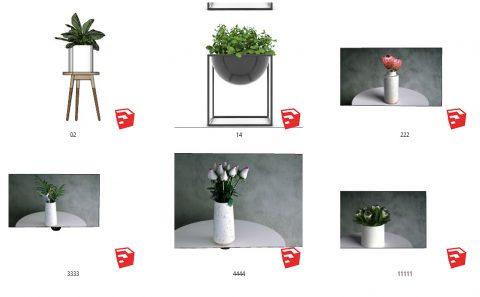 دانلود انواع  آبجکت های گل و گیاه زینتی اسکچاپ 02