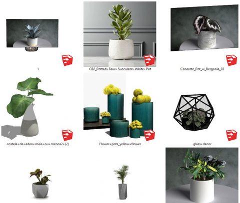دانلود انواع  آبجکت های گل و گیاه زینتی اسکچاپ 01