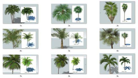 دانلود انواع آبجکت های درخت در اسکچاپ 03